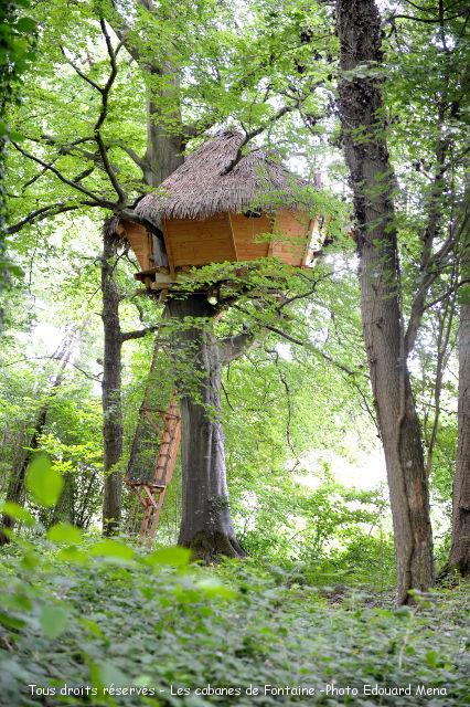 noces de bois dans une cabane dans les arbres les cabanes de fontaine ch tel. Black Bedroom Furniture Sets. Home Design Ideas