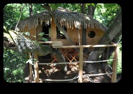 location cabane dans les arbres le vieux ch ne les cabanes de fontaine ch tel. Black Bedroom Furniture Sets. Home Design Ideas